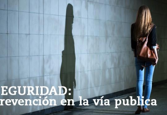 SEGURIDAD: Prevención en la vía publica