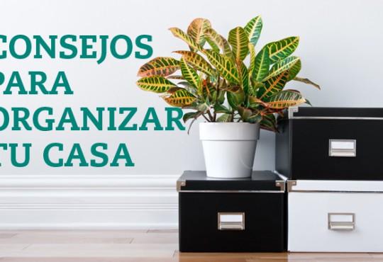 CONSEJOS PARA ORGANIZAR TU CASA