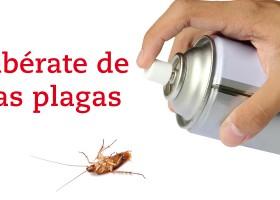 ¡Libérate de las plagas!