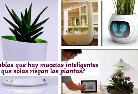 Macetas inteligentes para cuidar tus plantas